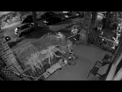 Person of Interest in Theft II, 400 block of Hamilton Street, NW, on October 29, 2017