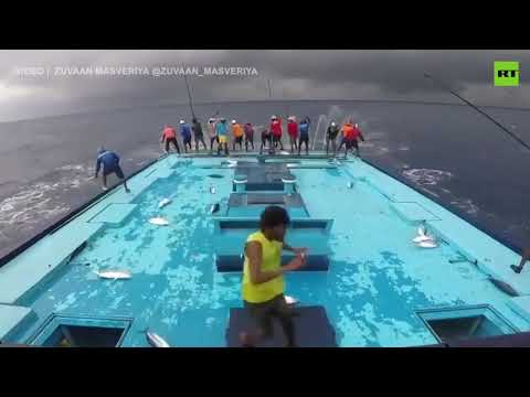 Fishy day!   The most intense fishing video you've ever seen