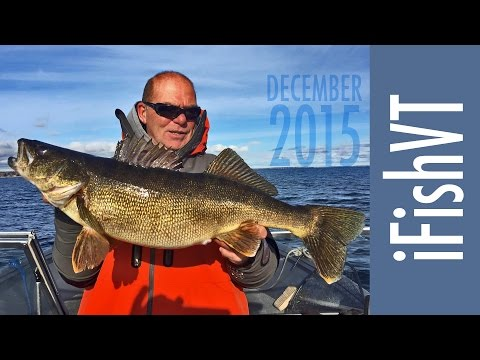 Fall Bass, Walleye, Lake Trout Fishing on Lake Champlain with Captain Mike