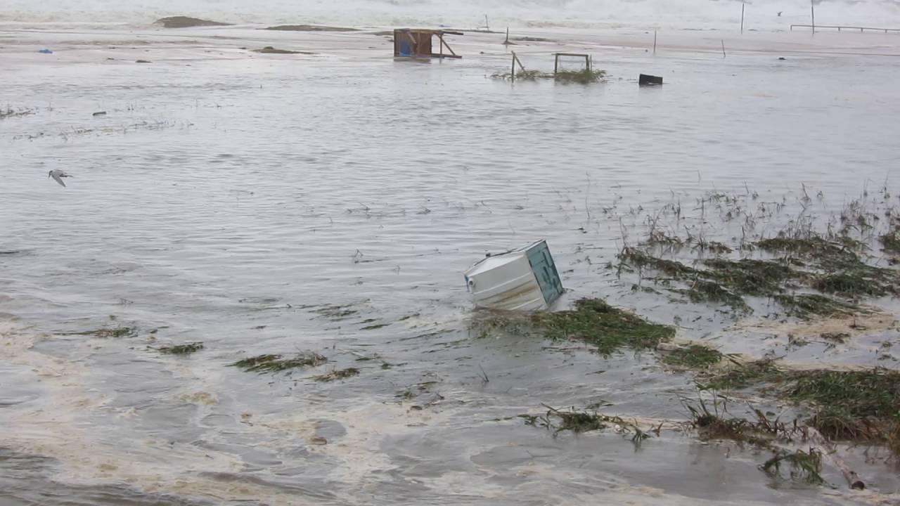 тайфун в приморье август 2016 фото