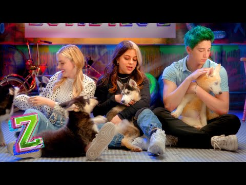 Puppy Q&A Challenges with Meg, Milo, and Ariel!  🐶| Compilation | ZOMBIES 2 | Disney Channel