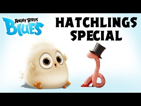 Angry Birds Special | The Early Hatchling Gets The Worm
