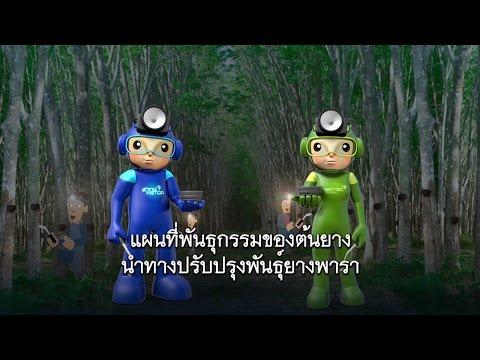 พลังวิทย์ คิดเพื่อคนไทย ตอน แผนที่พันธุกรรมของต้นยาง นำทางปรับปรุงพันธุ์ยางพารา