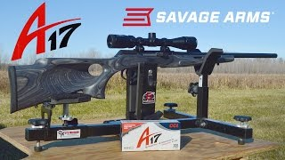 savage a17 thumbhole target combo review