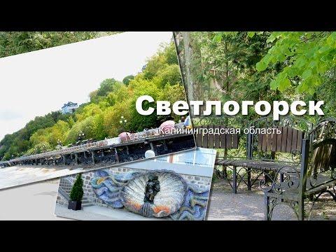 калининградская область светлогорск знакомства