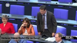 volksverhetzung im Bundestag - Eine Zusammenfassung - SPD AFD CDU GRÜNE