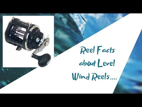 Salmon Reels Explained/Fundamental Fishing