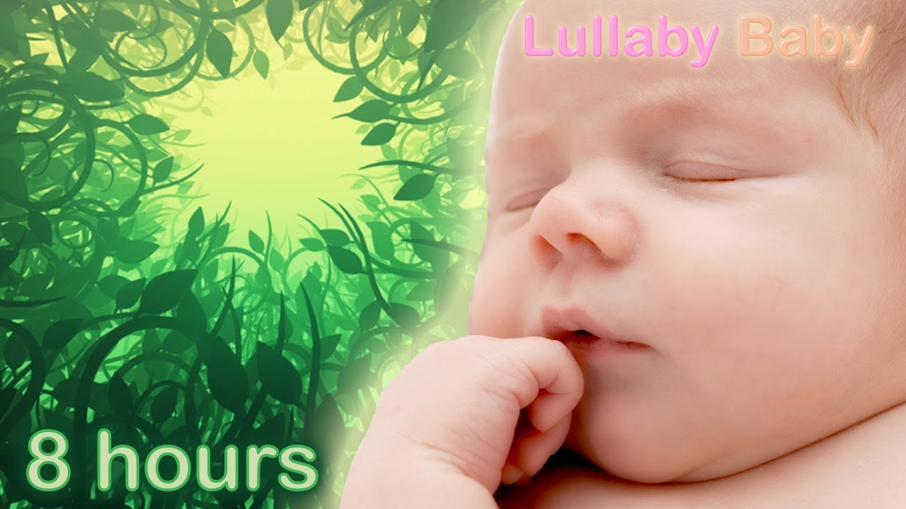 8 Hours Baby Sleep Music Relaxing Music For Babies To Go To Sleep Forest Sounds Youtube