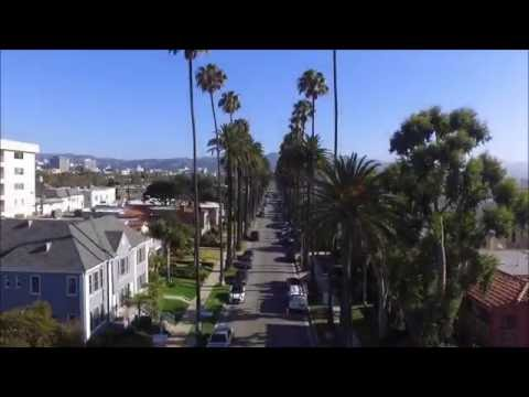 Beverly Hills California - drone view of the gorgeous palm trees