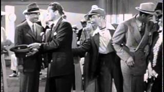 One Night in the Tropics Official Trailer #1 - William Frawley Movie (1940) HD