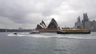Ngắm nhà hát Opera Sydney từ tàu du lịch