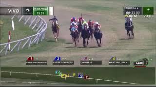 Vidéo de la course PMU PREMIO STOKER