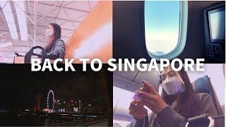 [외항사vlog]한국에서 싱가포르 입국 절차 l 싱가포…