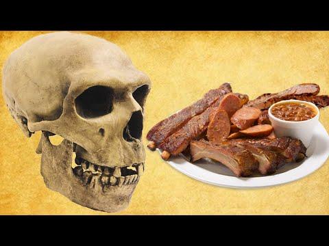 Doctor Explains THE OPTIMAL HUMAN DIET