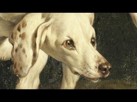 Les chiens du Roi