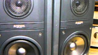 PIONEER S-P700V Speaker System (Bass I Love You)