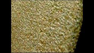 видео Камневидное покрытие для стен