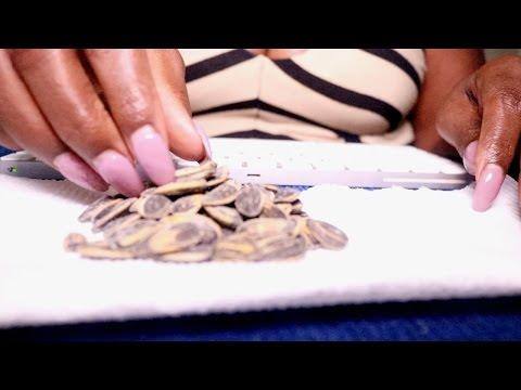 Cracking ASMR Eating Sounds/Sunflower Seeds | Ranch