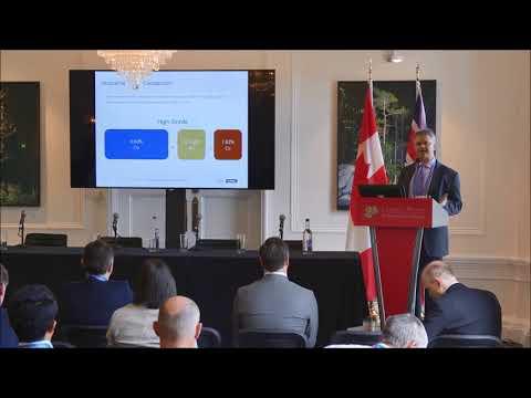 First Cobalt investor presentation by Frank Santaguida at CMS 2018