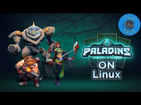 Windows Games on Linux | Episode 8 | Paladins