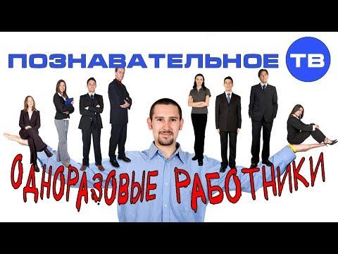 Почему вы не рабы, но работники (Познавательное ТВ, Валентин Катасонов)
