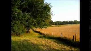 Electro - Summertime Cowboy (Serge Santiago Remix)