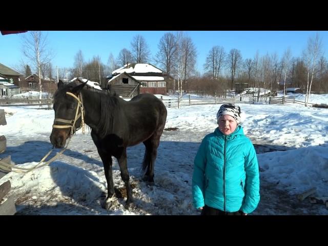 Изображение предпросмотра прочтения – АлександраЛефранк читает произведение «Хорошее отношение к лошадям» В.В.Маяковского