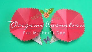 It is origami for Mother's Day. It is how to fold carnations. I tri...