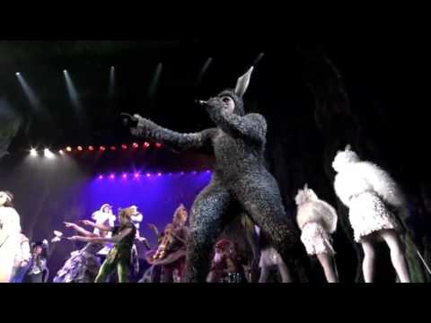 Shrek the musical~I'm a believer
