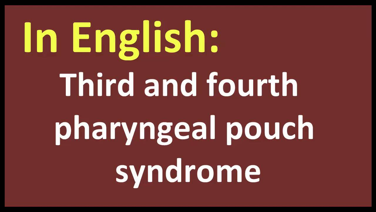 Meaning of fourth - Third And Fourth Pharyngeal Pouch Syndrome Arabic Meaning
