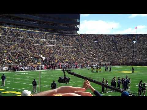 Michigan Stadium Wave