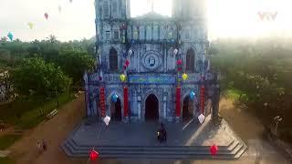 Tour Du lịch phú yên - Cảnh đẹp Phú Yên - Việt Nam - Hoa vàng trên cỏ xanh