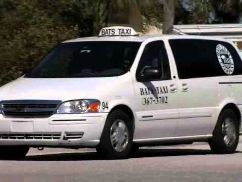 Bats Taxi Company St Pete Beach Fl