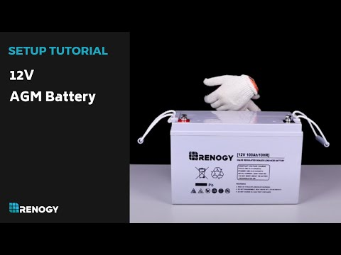 Renogy 12V AGM Battery