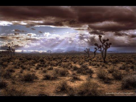 Mysteries in the Desert