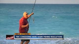 FWC looking at changes for surf anglers targeting sharks