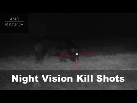first-hunt-with-the-atn-x--sight-ii-hd-(kill-shots)