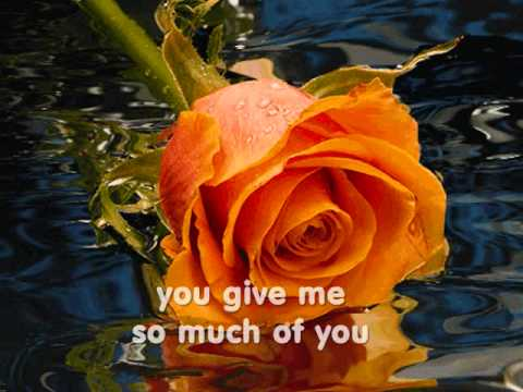YOU ARE THE LOVE OF MY LIFE - (Lyrics)