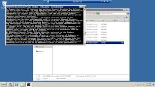 ScaleIO - Windows Install