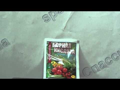 Как разводить борную кислоту для опрыскивания помидоров?