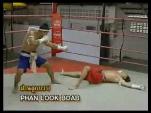 Видео уроки тайского бокса, муай тай. Самоучитель