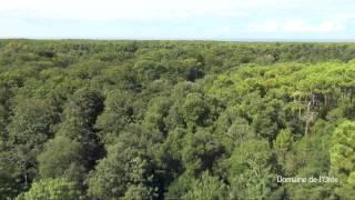 Vidéo drone camping vendée Olonne sur Mer - Domaine de l'Orée 4 étoiles