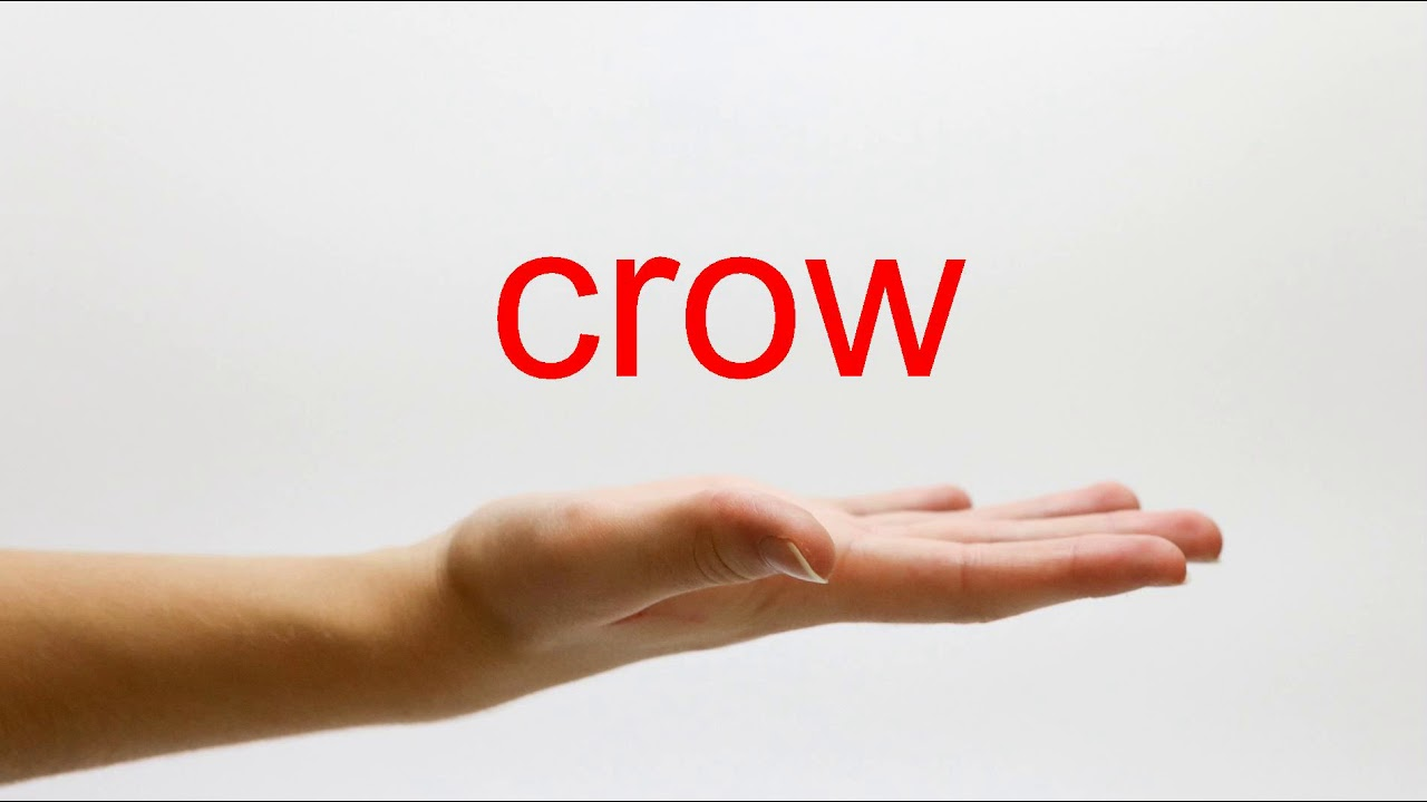 How to Pronounce crow - American English - YouTube