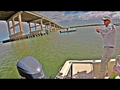 Florida Inshore Saltwater Fishing Ponce Inlet with Captain Mike!