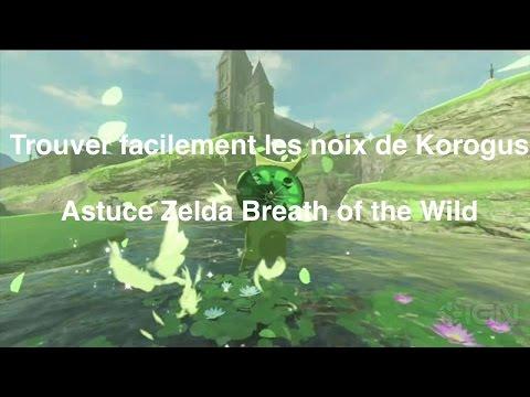 The Legend of Zelda: Breath of the Wild - Accès au sanc