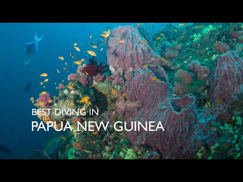 Best Scuba Diving In The World - Papua New Guinea
