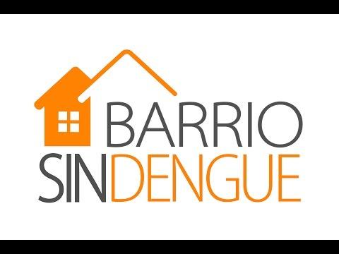 Lanzaron Barrio sin dengue, una aplicación para combatir al mosquito Aedes Aegypti