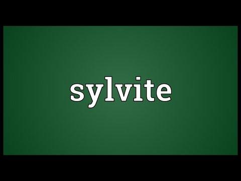 Header of sylvite