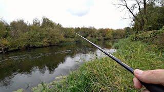 Стоянки щуки на малой реке Находим и ловим Ловля щуки на спиннинг осенью с берега