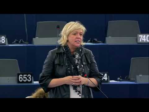 Hilde Vautmans 16 Nov 2017 plenary speech on Terrorist attacks in Somalia
